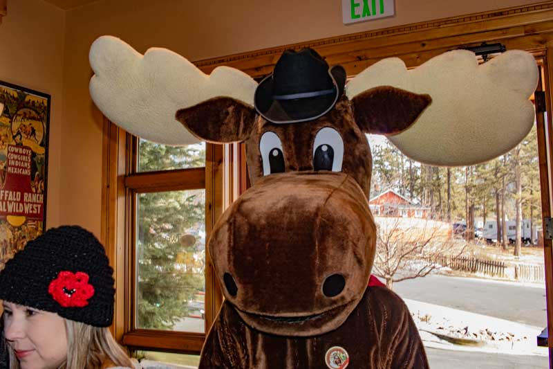 Moose is Loose Kickoff Event, Woodland Park, February 9